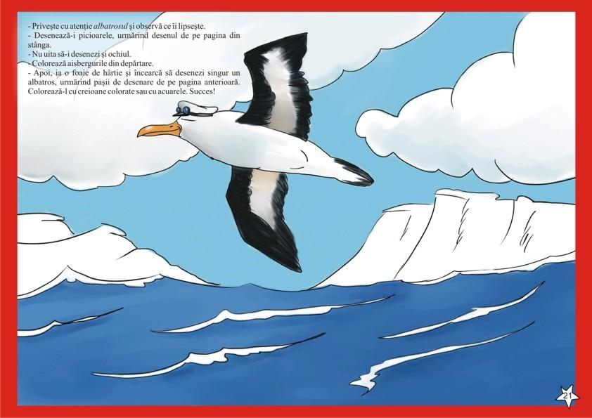 Vreau Să Desenez Animale De La Poli 5 67 Ani Editura